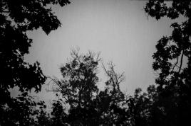 the rain clouds are darkening
